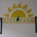 イスタンブル・オーガニックツアー Vol. 5 City Farm