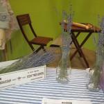 健康博に行ってきた! Vol. 6 フランスのオーガニックコスメ《レーヴ ド プロヴァンス》を紹介した日本グリーンパックス