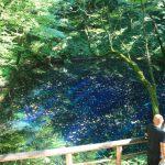 夏休みは森林セラピーで心も体も健康に! − 深浦町十二湖