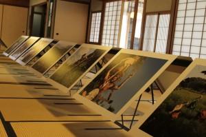 KYOTOGRAPHIE8