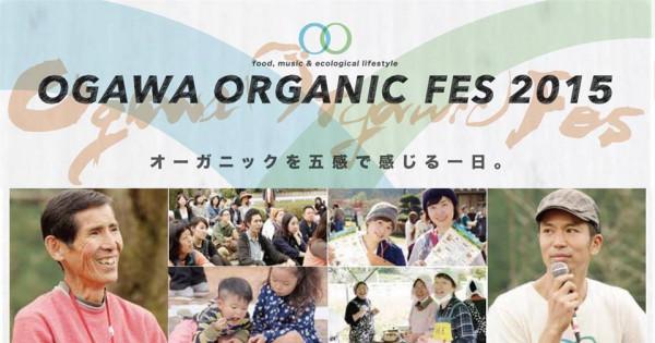 Ogawa4