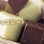 〈ビオフロレスタ〉無添加キューブチョコレート 15%OFFセール ~11/30まで