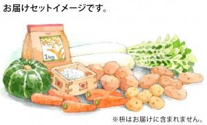 フェリシモりんご3
