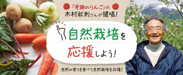 フェリシモりんご1