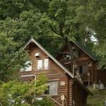 キャンプ場 ログハウス