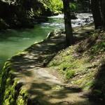 森と川の散策道