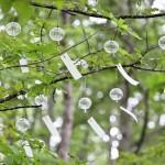 自然環境へ貢献する「カーボン・オフセット」で、自然と触れ合う機会を創る「十勝千年の森」