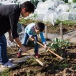長靴ひとつで無農薬・有機農業を始められる、サポート付き市民農園『シェア畑』