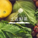 宛名とメルアドで、大切な人に旬の野菜をお届け。『土佐野菜』× ギフト特化型メディア『Anny magazine』