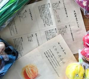 土佐野菜 (3)