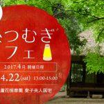 4月22日(土)新緑の蘆花恒春園で「糸つむぎカフェ」開催。オーガニック和綿栽培キットも販売中