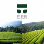 川根・樽脇園より、茶摘み体験イベント開催風景と有機新茶のご案内