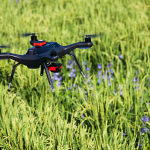 ドローン・ジャパンが次世代技術を活かして有機栽培する! 「ドローン米」