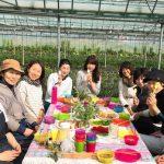 【Go Organics Japanの挑戦ーGO TEAM農園からのお便り Vol.2】すっかり春を迎えた農園より