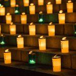 6/16(土)大地を守る会の「100万人のキャンドルナイト@増上寺2018」