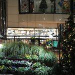 【12月21日~25日】プレゼント探しのあとは、オーガニックレストランでアットホームなクリスマスディナーを
