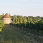 オーガニックワインの第一人者 田村安が案内するフランスのオーガニックワイン農家訪問ツアー