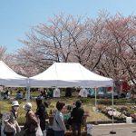 環境配慮型「ごみゼロ」マルシェの実現に向け、埼玉・川口のファーマーズマーケットがリユース食器を導入